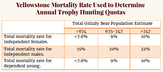 grizzly hunting quotas