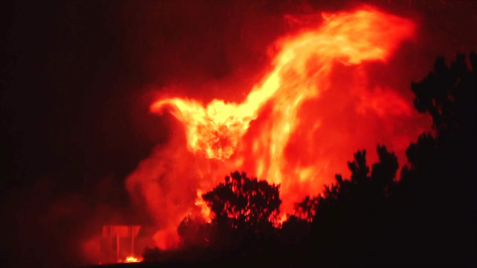 south africa fire
