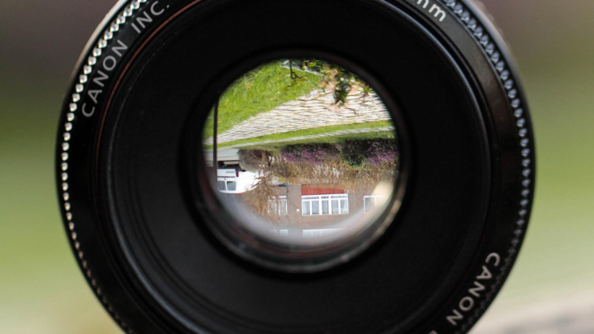 filtered lens nature