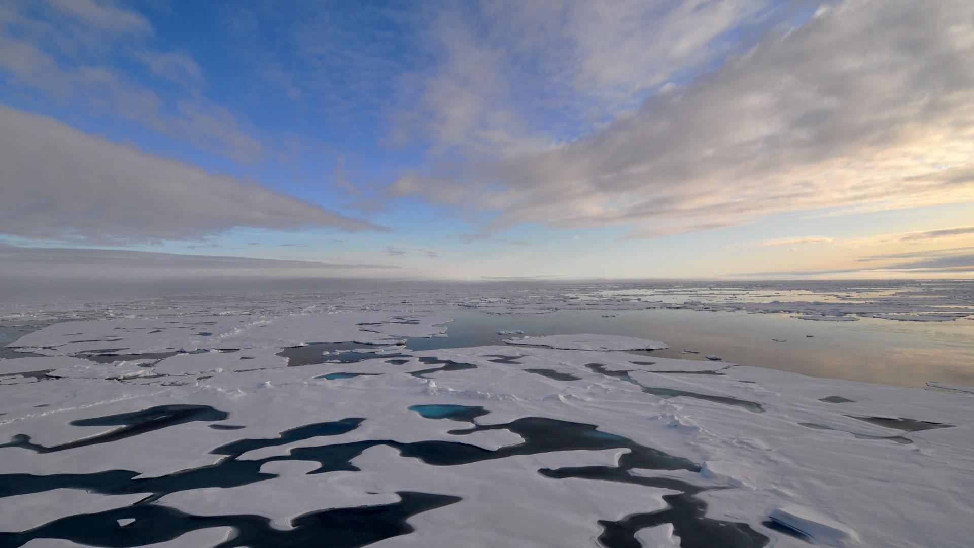 Arctic ice melts
