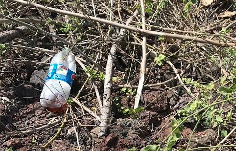 Galapagos littler bottle