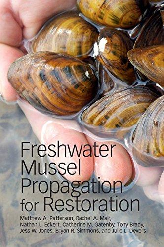 freshwater mussel propagation