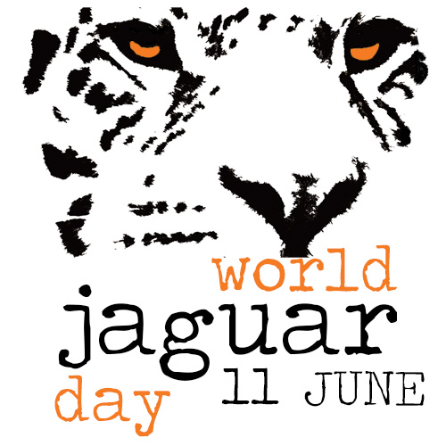 world jaguar day