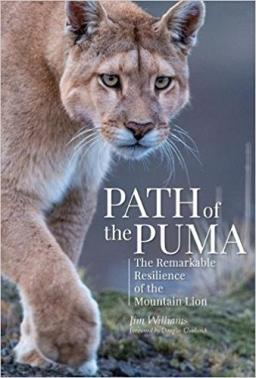 path of the puma