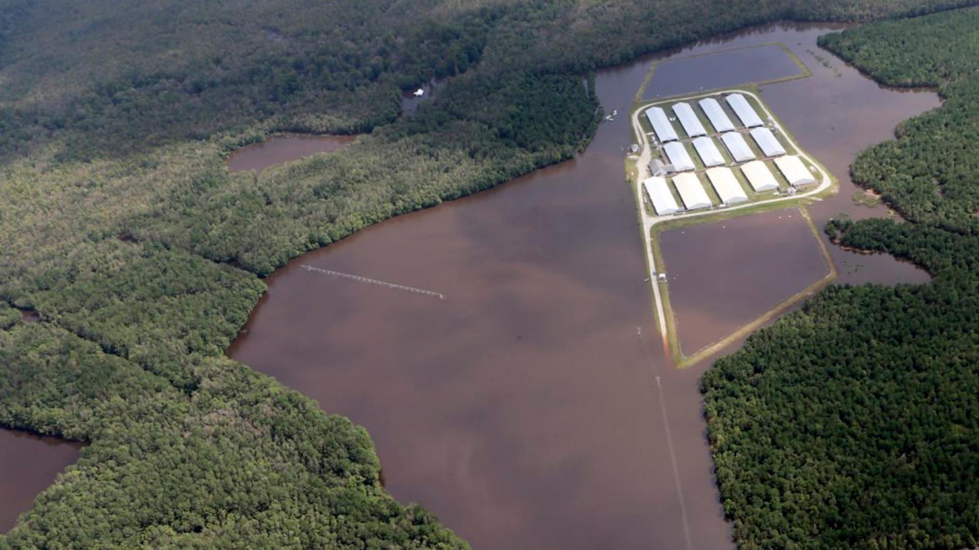 CAFO manure lagoon