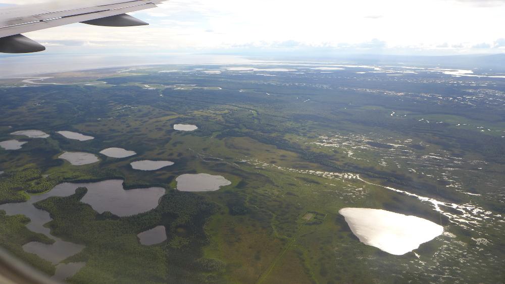 Alaskan wetlands