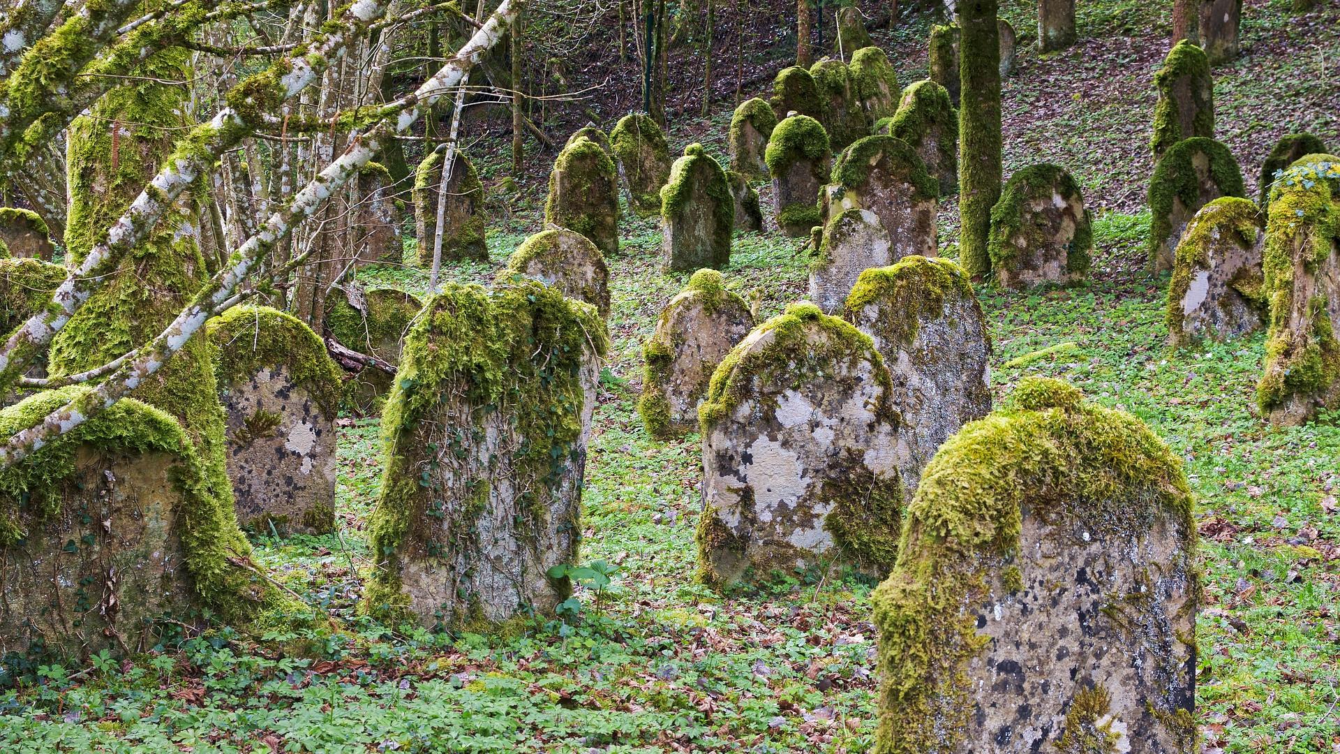 mossy gravestones