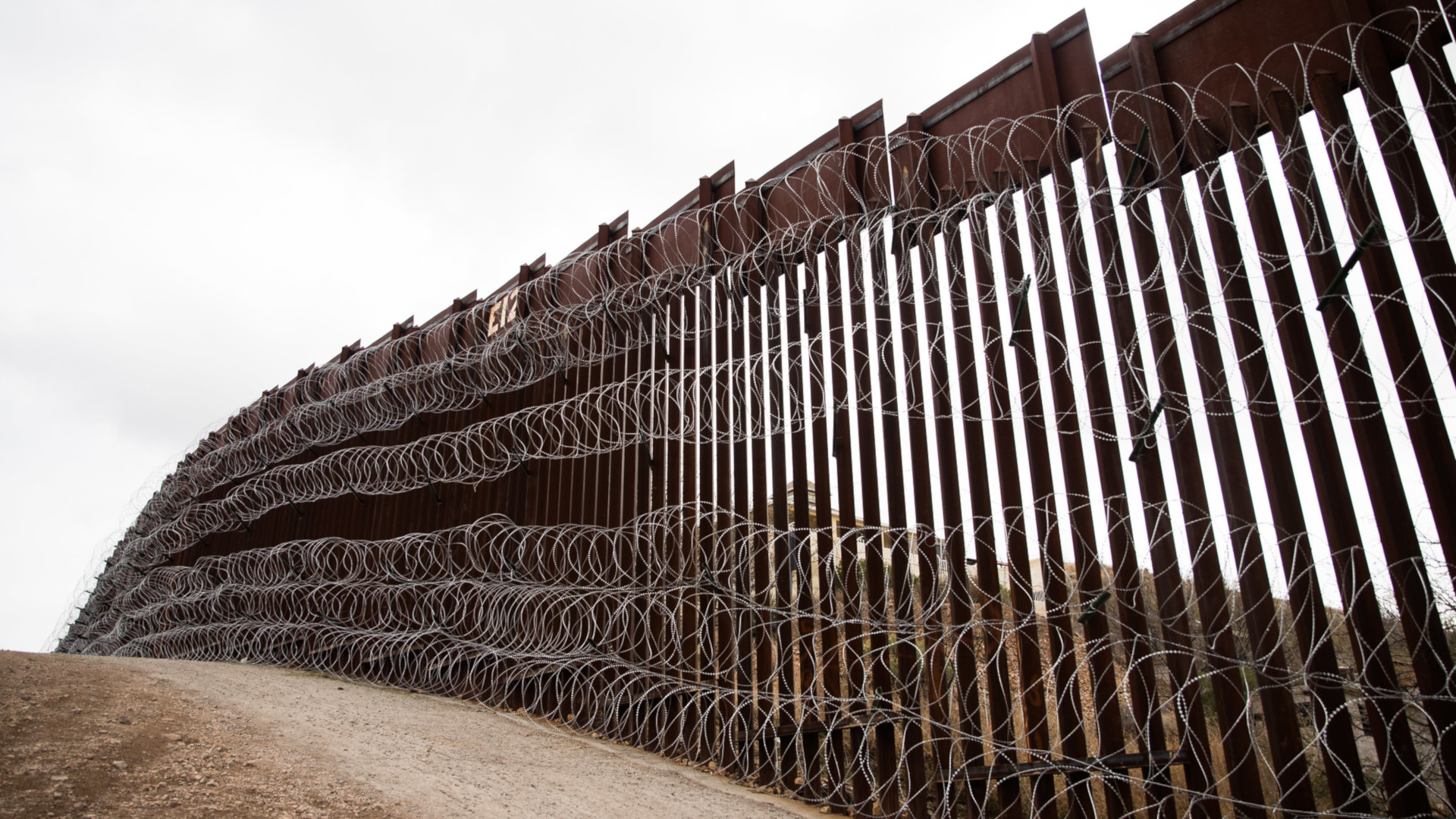 'This Is Not Like a Fence in a Backyard' — Trump's Border Wall vs. Wildlife • The Revelator
