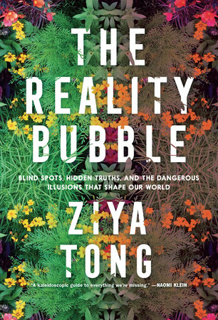 Reality Bubble book cover