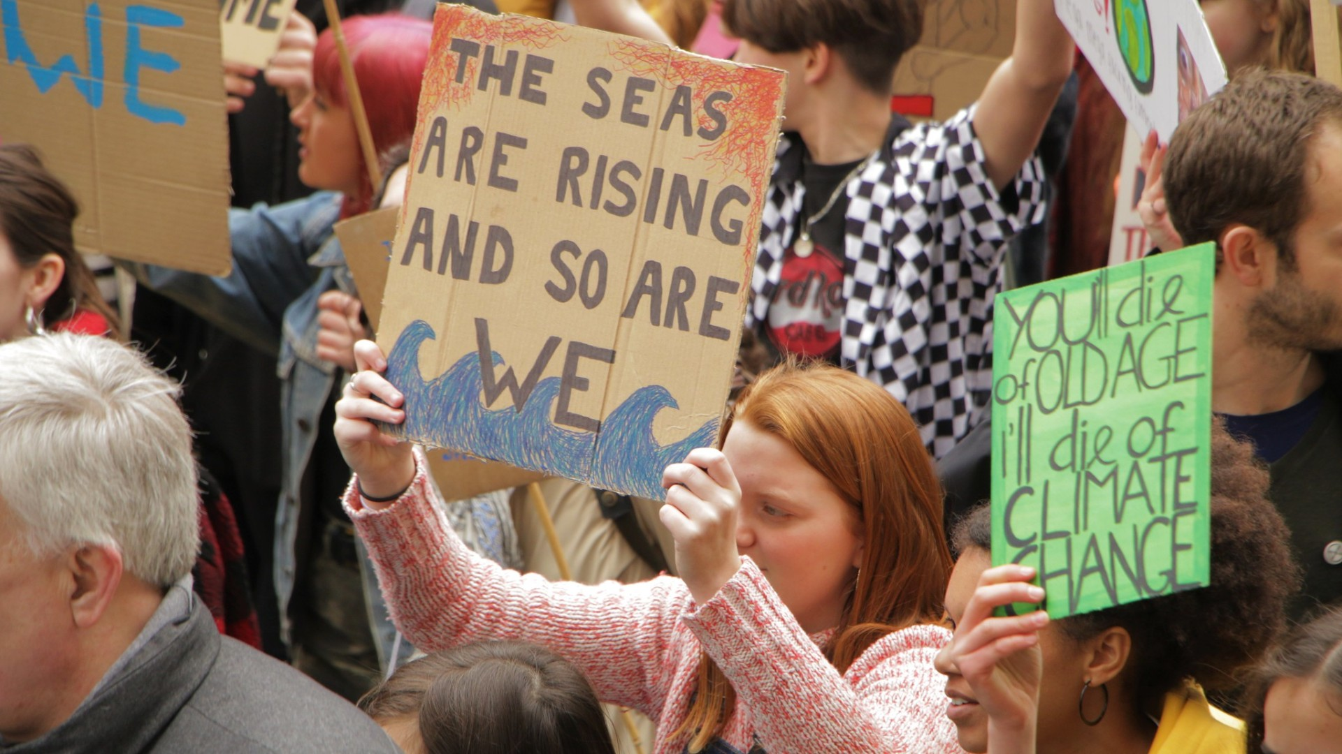 Climate strike protest signs