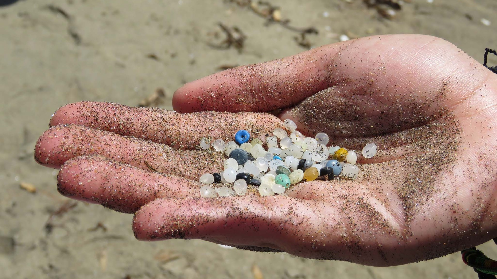 plastic pellets from a beach