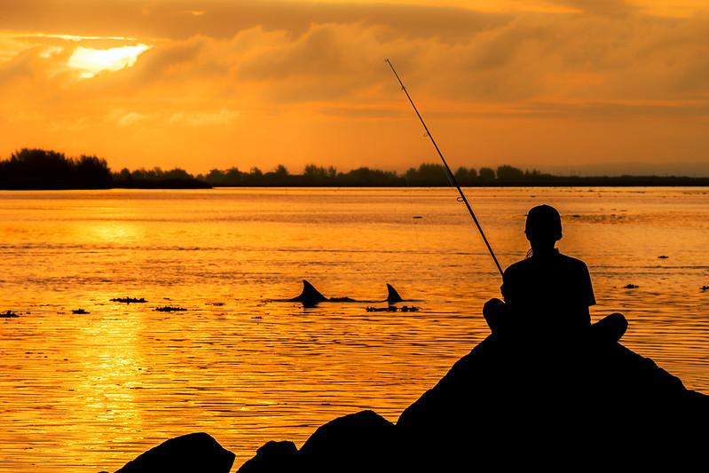 fishing brazil