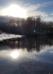 sun on water