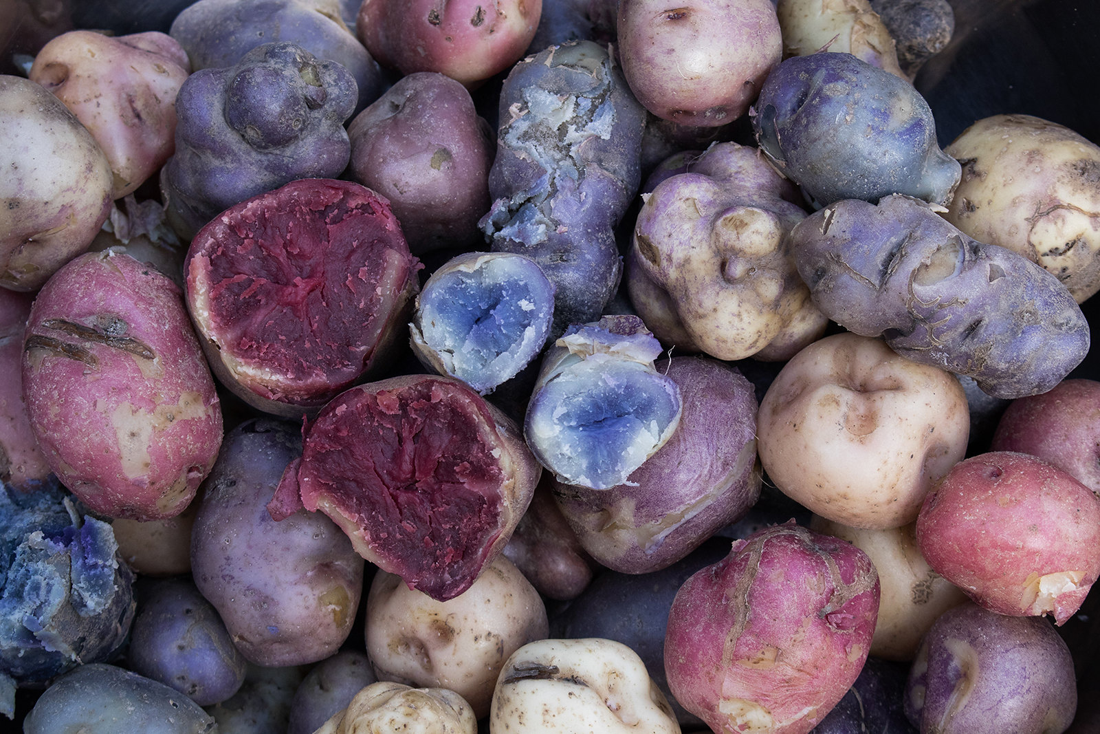 native potatoes