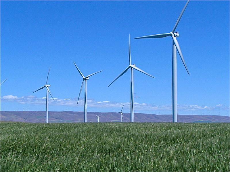 turbines in field