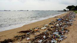 plastic debris in the tide line of the beach