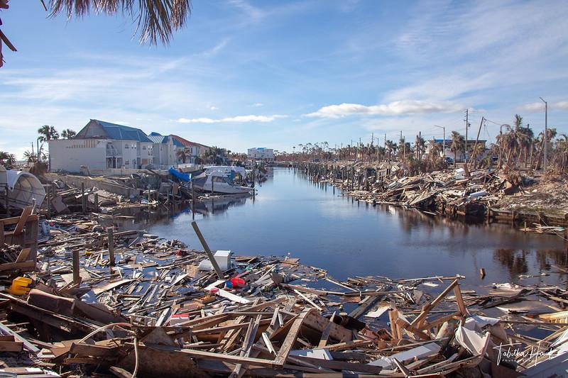 debris on shoreline
