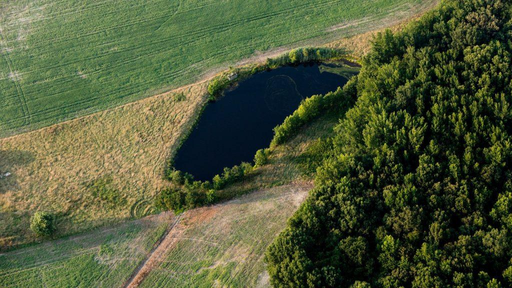 wetland in farm field