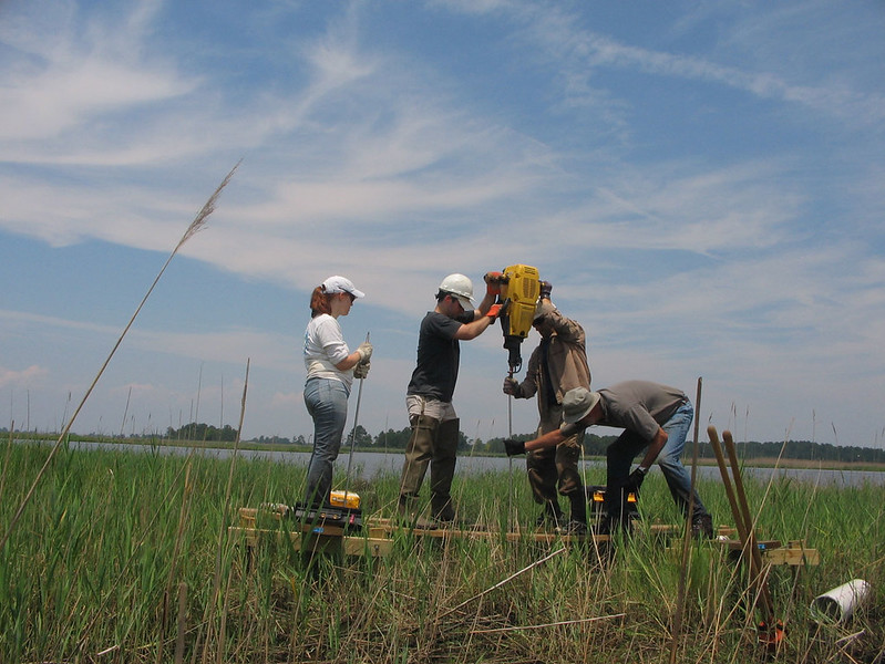 scientists install device in wetland