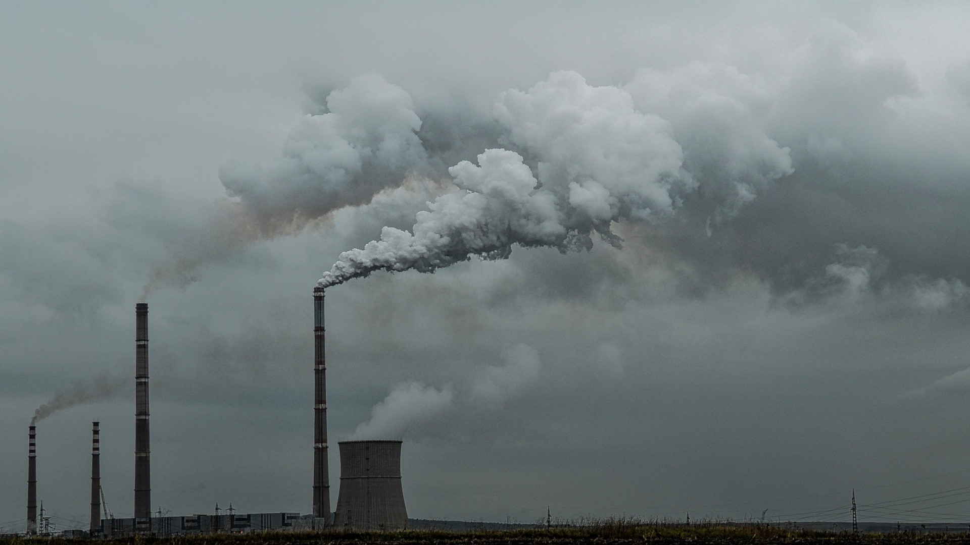 Take Corporate Climate Pledges of 'Net-Zero' With a Healthy Dose of Skepticism • The Revelator