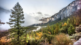 California Yosemite Valley