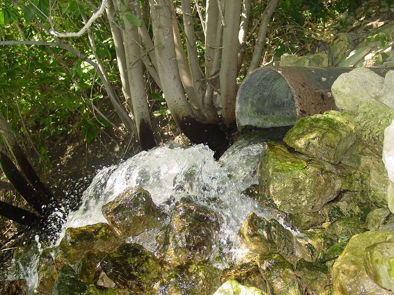 Water pipe over rocks and trees