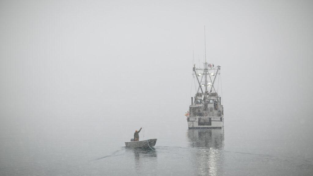 Old Harbor fishing boats